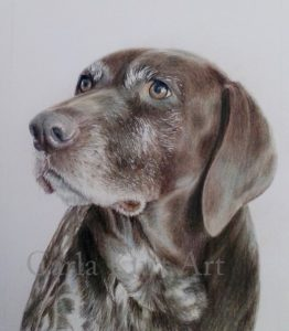 Fathers Day - Dog Pet Portrait 5 x 7 Colored Pencil Art